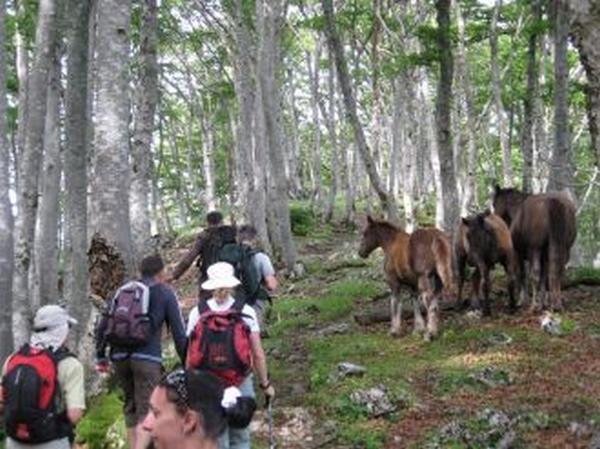 village vacance bois perche ASPET
